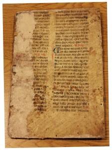 UVA Manuscript